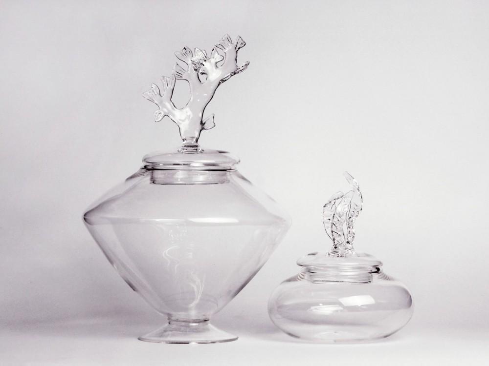 Algae, Simone Crestani