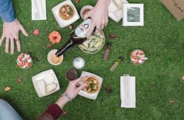 Fanceat e Gardenia un picnic stellato 6