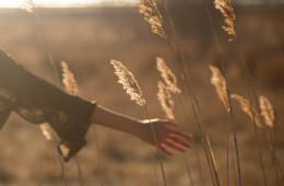 Film in libertà: pellicole dallo stato d'animo estivo