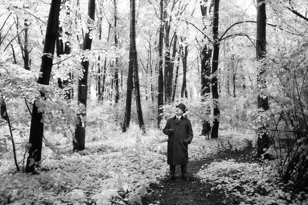 Foresta Bianca_White Forest_stampa 60x90_2di5