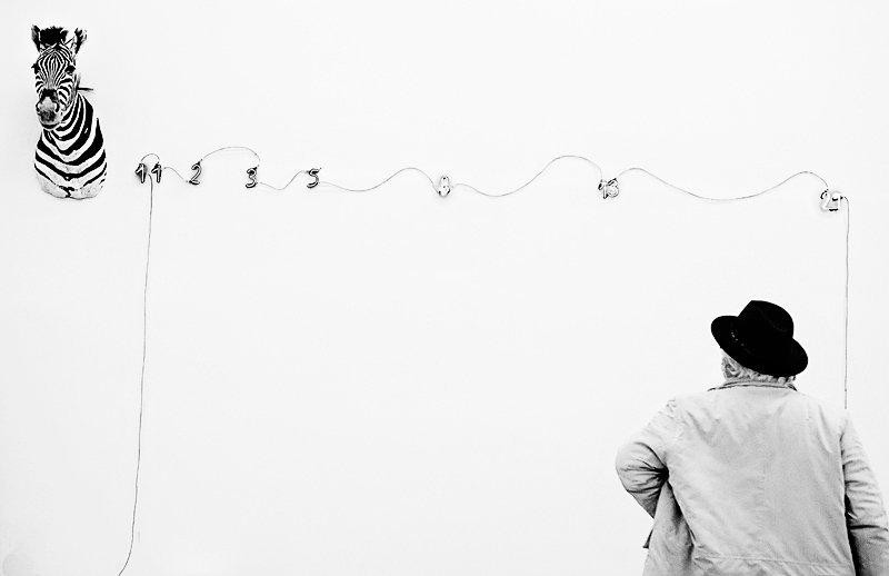 Mario Merz, Zebra (Fibonacci), 1973, Museo del Novecento, Milano