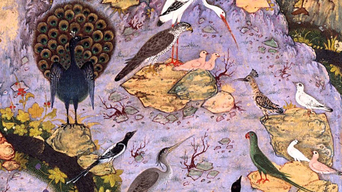 La Conferenza degli Uccelli