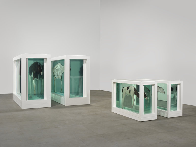 """Damien Hirst – """"Mother and Child (Divided)"""""""