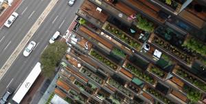 Roof Garden, 10 progetti incredibili 27
