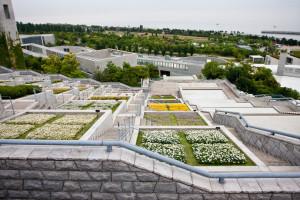 Roof Garden, 10 progetti incredibili 12