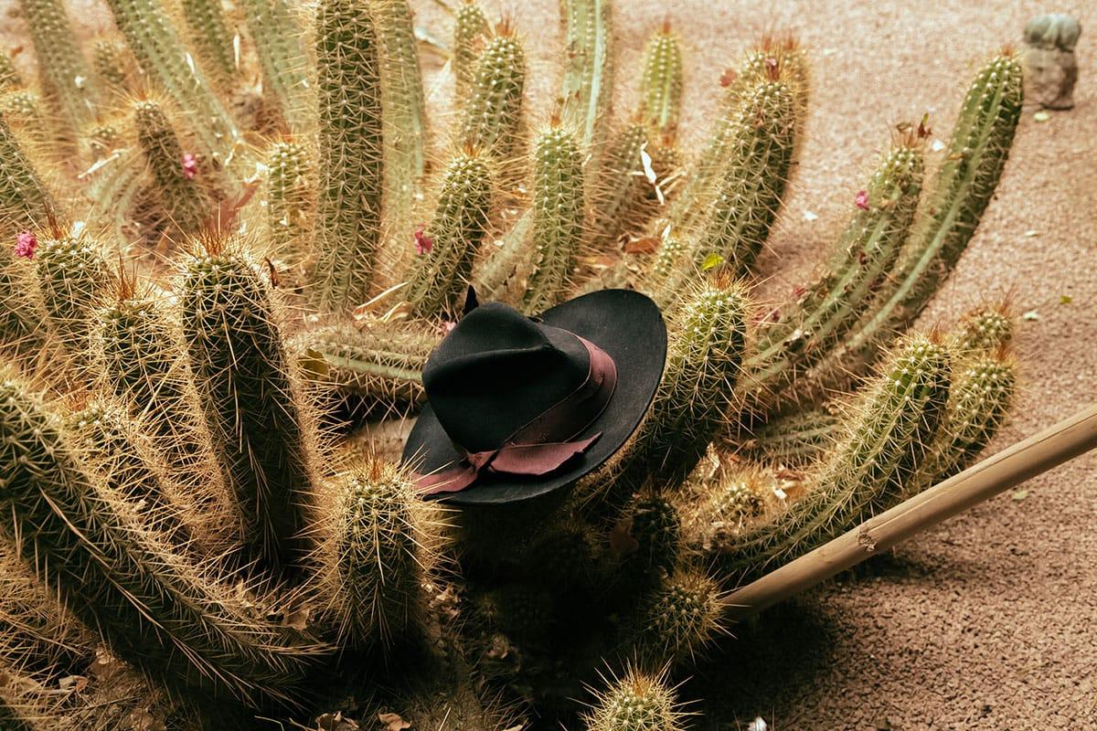 Cappelli di design: brand emergenti 9