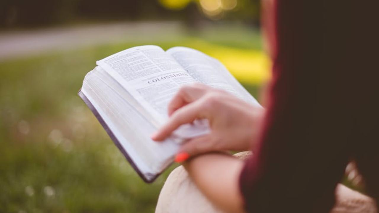 Lettura al parco: i libri da leggere nel verde