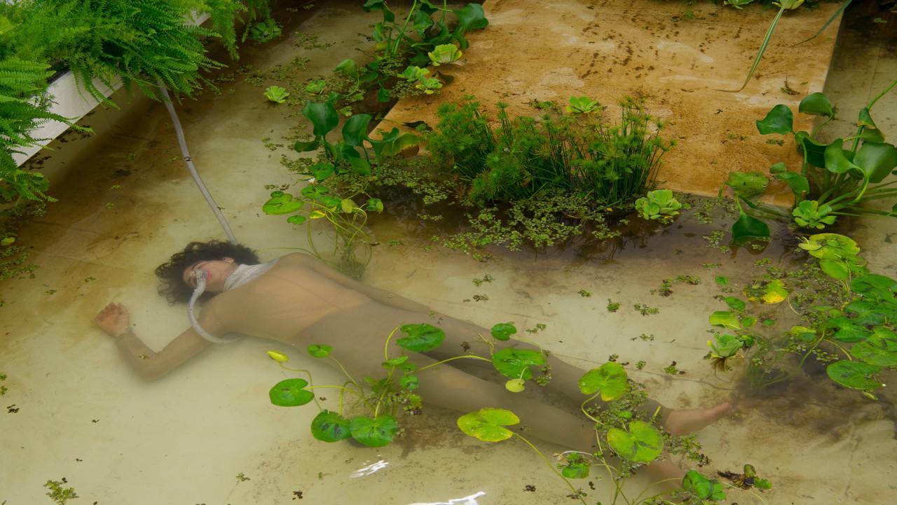 Giardini acquatici – Giovanni Vetere a Roma