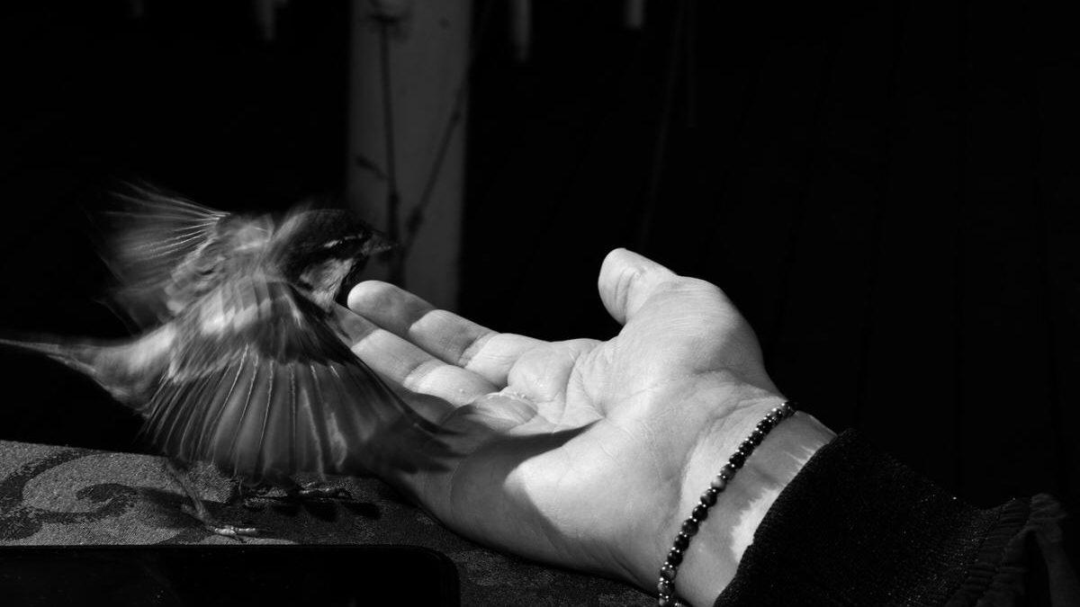 Ira Kuranova, fotografa del minimalismo – Intervista